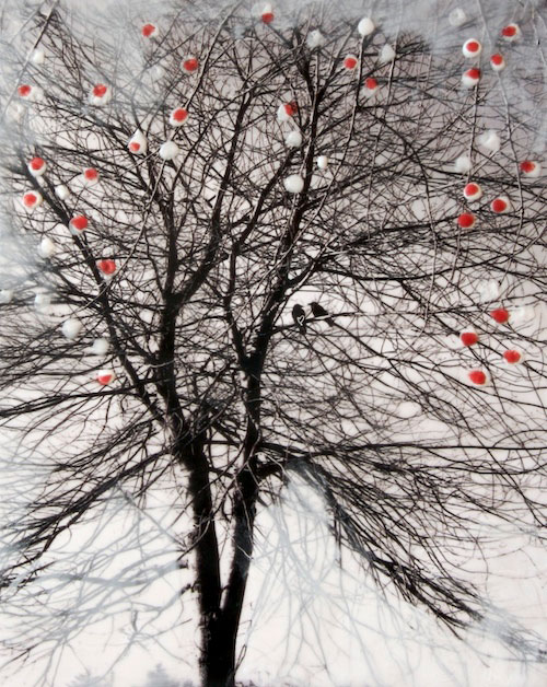 "© Arleigh Wood ""Keep me company"""