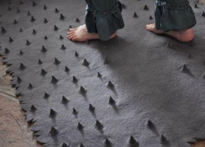 http://www.milchmaedchen-design.de/wp-content/uploads/2010/05/roneljordaan_thorns